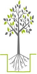 biohuis boom illustratie